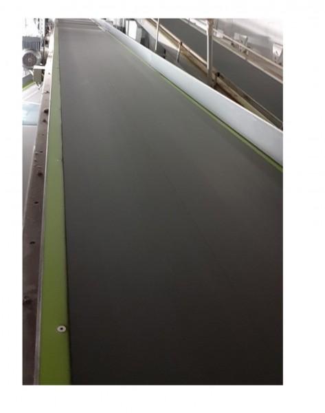 Lippert belt conveyor belt conveyor GF 5374-750-600