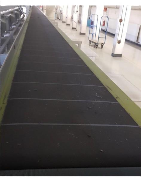 Lippert belt conveyor belt conveyor GF 17250-610-450